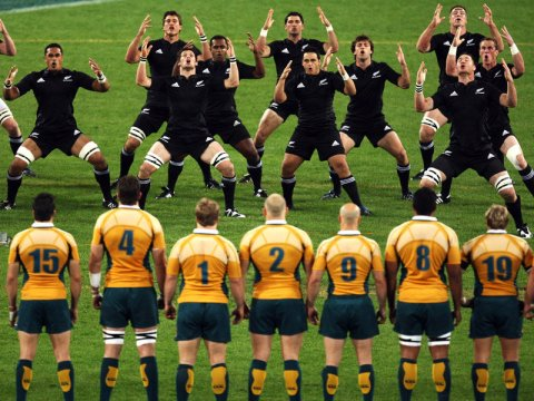 Australia VS New Zealand Rugby